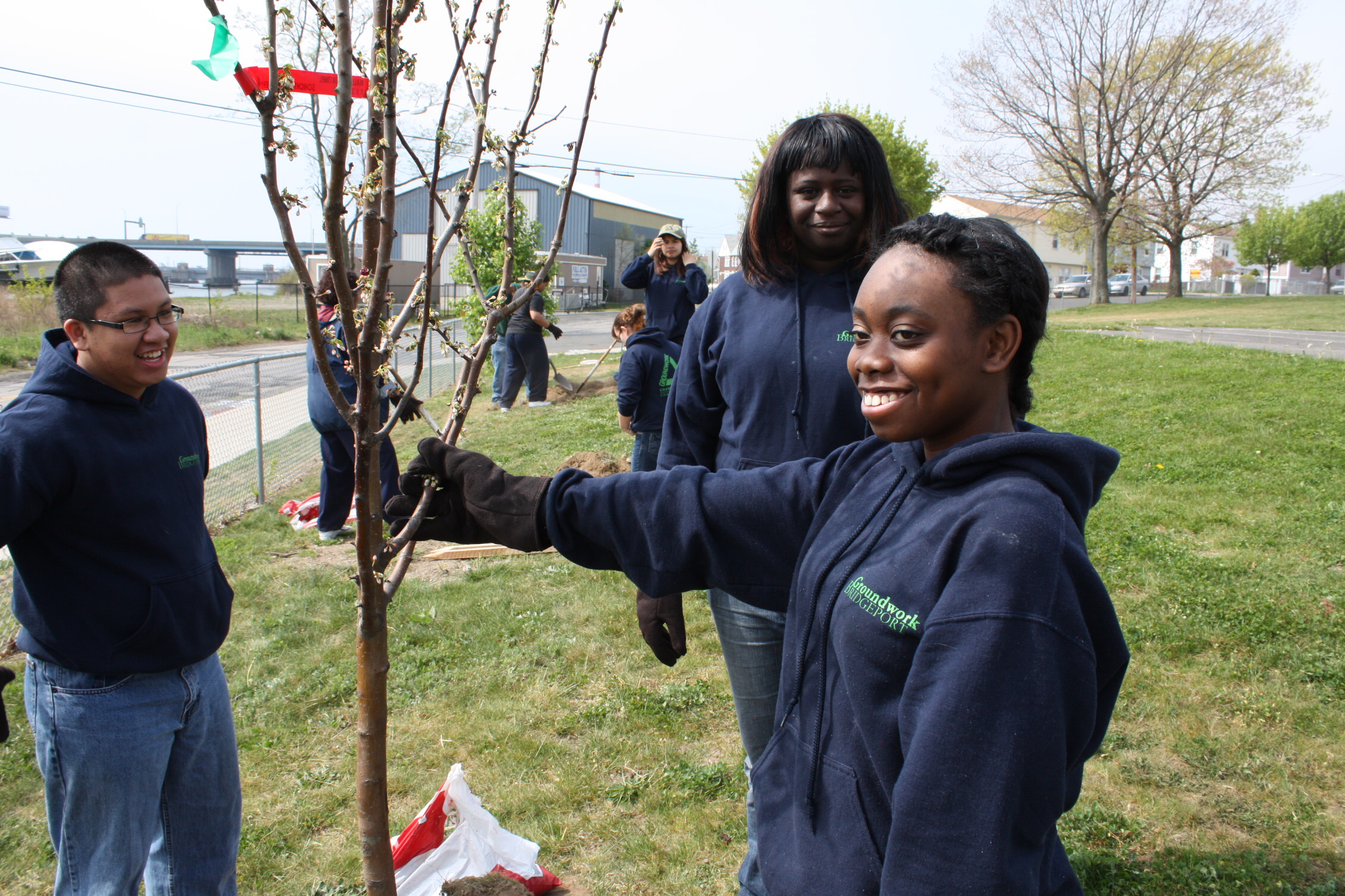Partnering with the City of Bridgeport to Support Urban Forestry