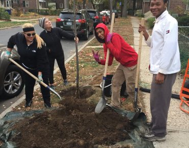 Groundwork Bridgeport students planting trees as part of Bridgeport's Adopt A Tree program