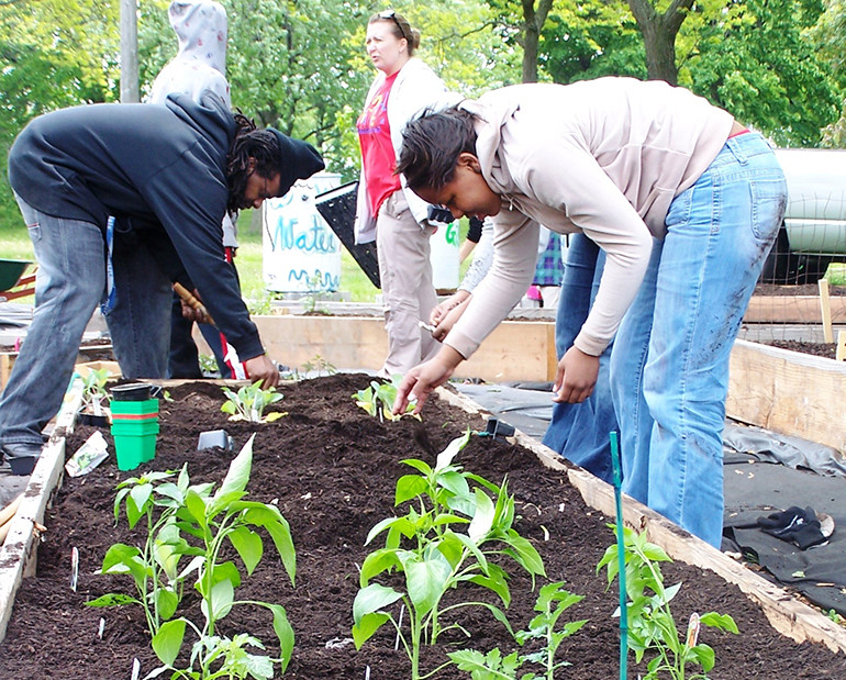 Making Milwaukee's Urban Gardens Flourish