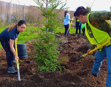 Groundwork Richmond is building community assets and community capacity by planting trees and beautifying the Richmond Greenway, site of a former railway.