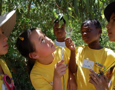 Student scientists investigate insects on native foliage at Groundwork San Diego's EarthLab