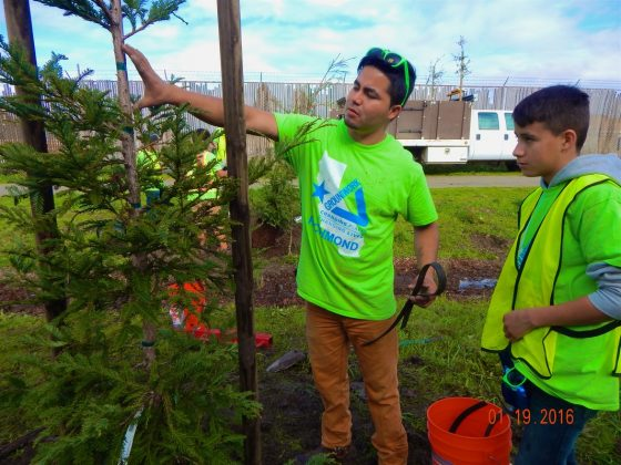 Javier supervises youth tree planting in Richmond