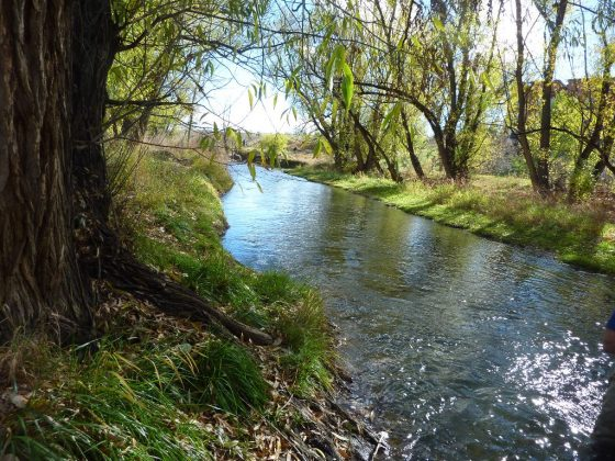 Segment of the lower Bear Creek in Sheridan, Colorado