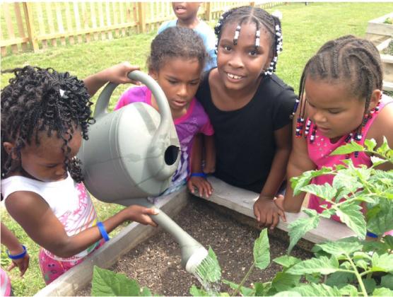 Young gardeners watering community garden plot at Milwaukee's Neighborhood House Garden