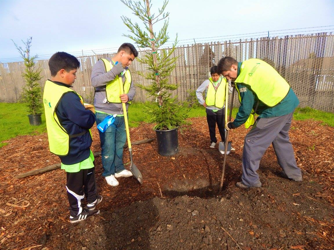 10,000 Trees 2.0 Project