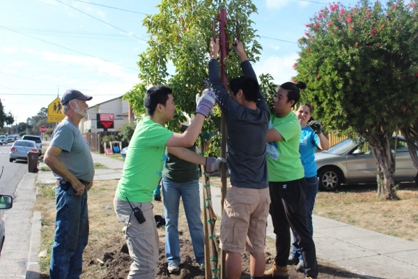 Groundwork Richmond Green Team members plant neighborhood trees.
