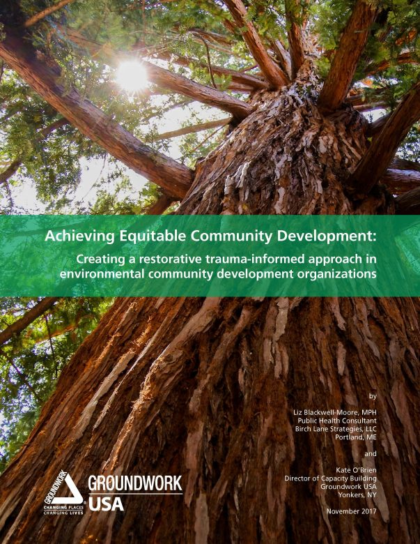 GWUSA white paper--Achieving Equitable Community Development cover