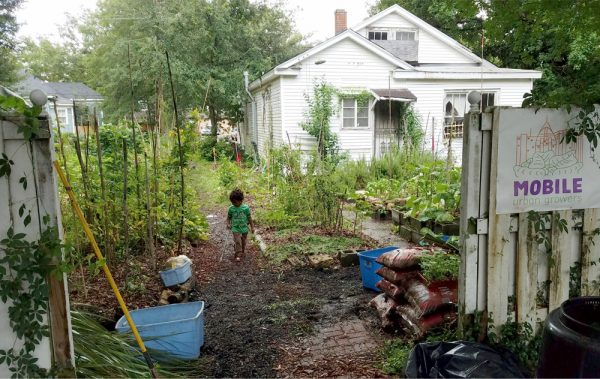 Mobile Urban Growers garden in yard of vacant property. Photo: Larissa Graham
