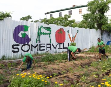 Groundwork youth working in the South Street Farm.