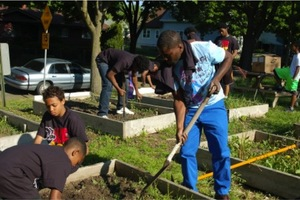 Groundwork MKE Green Team at work in community gardens.